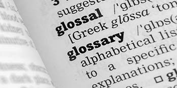 Photo of Glossary page from Dictionary
