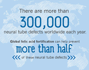 There are more than 300,000 neural tube defects worldwide each year.  Global folic acid fortification can help prevent more than half of these neural tube defects,.