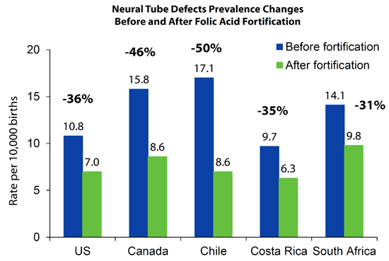 Neural Tube Defects Prevalence Changes Before and After Folic Acid Fortification