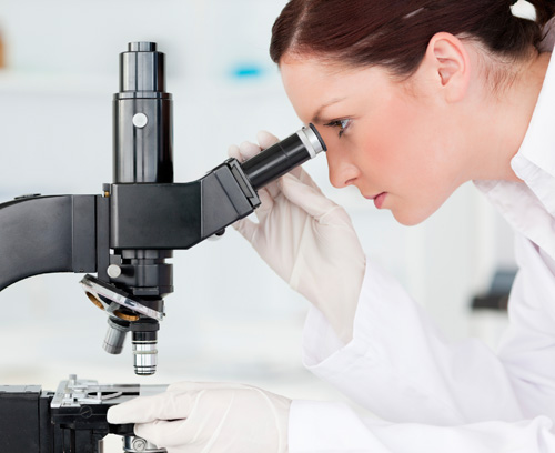 Lab worker looking through microscope
