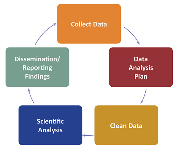 Flow chart: collect data, data analysis, clean data, scientific analysis, and dissemination and reporting findings