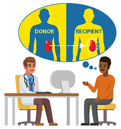 illustration of a kidney donor and receipient