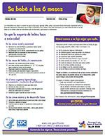 LTSAE Spanish Checklist 6 meses thumbnail