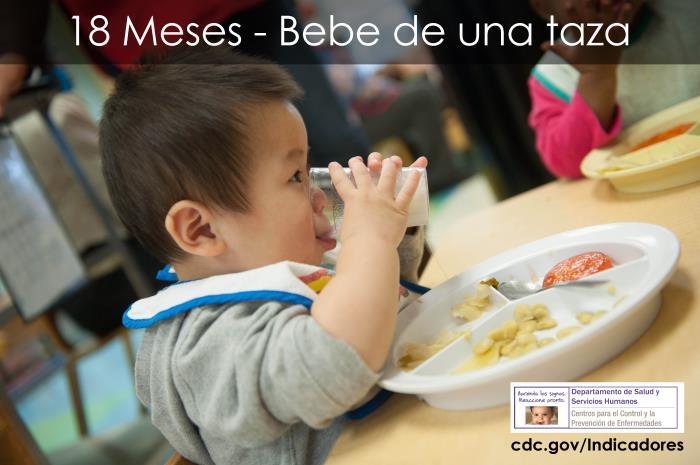Indicadores Importantes Su Bebe A Los 18 Meses Aprenda Los Signos