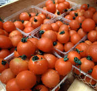 Photo of whole tomatoes.