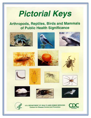 Picture of Book Cover for Pictorial Keys