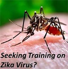 photo of the zika mosquito