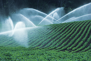 Field Irrigation System