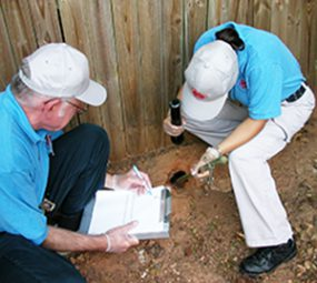 Photo of two people inspecting a rodent hole.