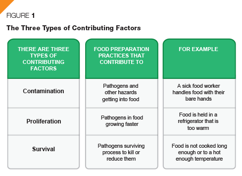 Figure 1 describes the three types of contributing factors: contamination, proliferation, and survival. Contamination means food preparation practices that contribute to pathogens and other hazards getting into food. Proliferation means food preparation practices that contribute to pathogens in food growing faster. Survival means food preparation practices that contribute to pathogens surviving a process to kill or reduce them.