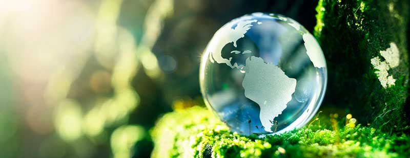Glass globe in nature concept for environment and conservation