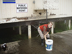 Danielle Buttke, DVM, PhD (EIS '10) collecting water samples in Alaska