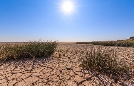 Drought and Your Health