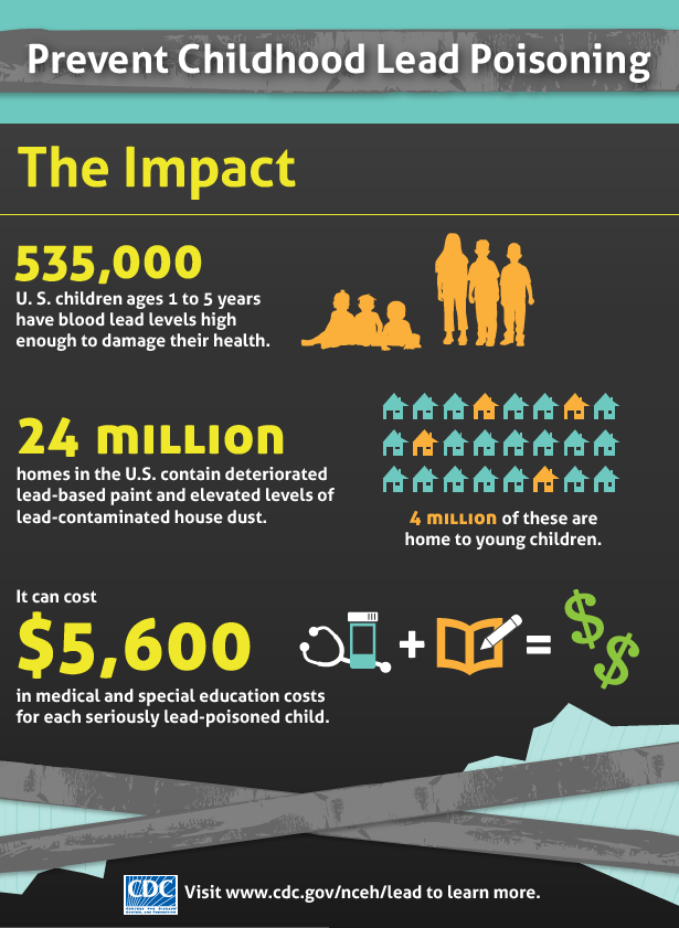 Lead Poisoning Prevention Infographic