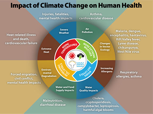 Climate change influences human health including increased respiratory and cardiovascular disease, injuries, fatalities, food- and water-borne illnesses and other infectious diseases, and threats to mental health.