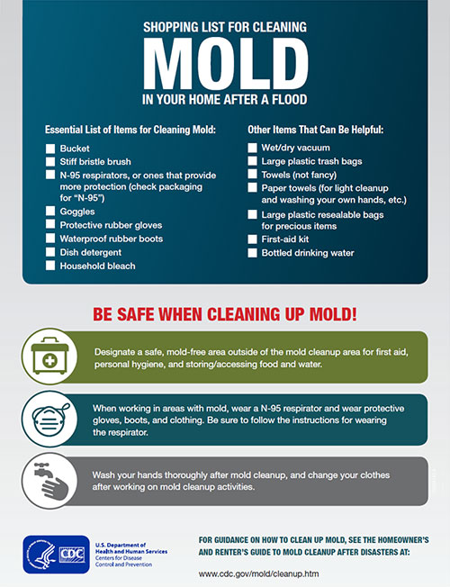 Shopping List for Cleaning Mold