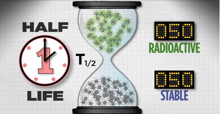 Illustration of 1 half-life with 50 radioactive atoms and 50 stable atoms remaining