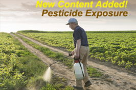 Man spraying pesticides on crops