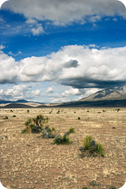 New Mexico desert landscape