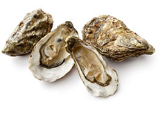 4 shucked oysters