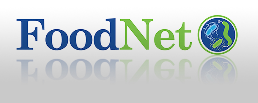 FoodNet logo with reflection under it