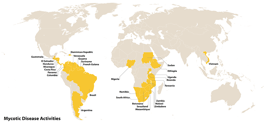Map of countries with mycotics disease activites. Countries are Argentinia, Botswana, Brazil, Columbia, Costa Rica, Dominican Republic, El Salvador, Ethiopia, French Guiana, Guatemala, Guyana, Honduras, Malawi, Mozambique, Nambia, Nicaragua, Nigeria, Panama, Rwanda, South Africa, Sudan, Suriname, Swaziland, Tanzania, Uganda, Venezuela, Vietnam, Zambia, Zimbabwe
