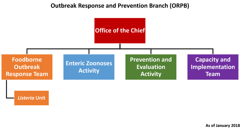 Outbreak Response Prevention Branch Organization Chart