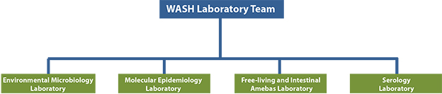 Graphic: Waterborne Disease Prevention Branch WASH Laboratory Team organizational chart. Laboratories consisting of Environmental Microbiology, Molecular Epidemiology, Free-Living Amebas, and Serology.