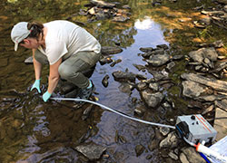 Diana Riner of CDC collects water samples from a creek.
