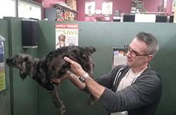 Dr. Scott Robertson (EIS 2017) examines a puppy in a pet store for signs of diarrhea.