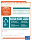 Bacterial Special Pathogens Fact Sheet