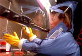 Researcher wearing protective clothing performing a diagnostic test