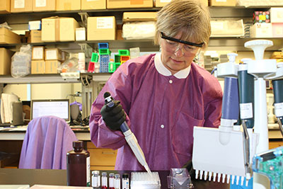 Microbiologist performs diagnostic test for a virus spread by mosquitoes.