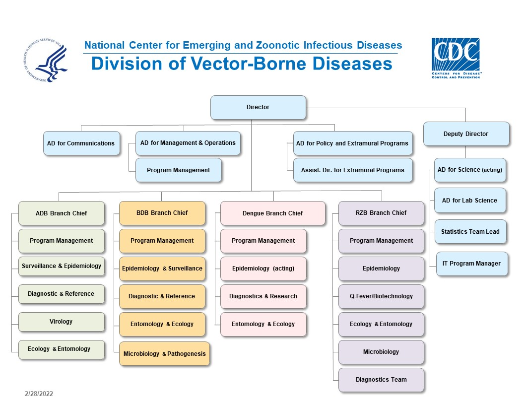 Centers for Disease Control and Prevention, National Center for Emerging and Zoonotic Infectious Diseases, Division of Vector-Borne Diseases Organization Chart