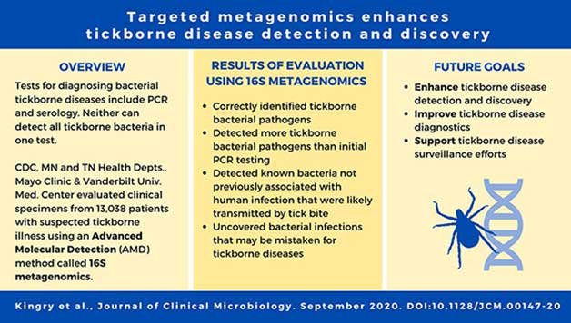 Targeted metagenomics enhances tickborne disease detection and discovery