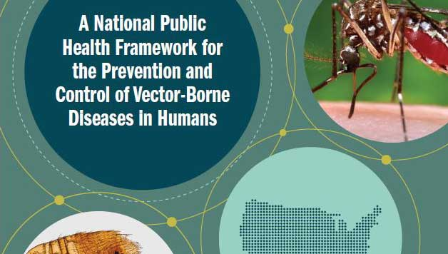 Cover of the brochure, A National Public Health Framework for the Prevention and Control of Vector-Borne Diseases in Humans