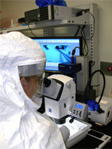 Scientist in a lab looking through a microscope