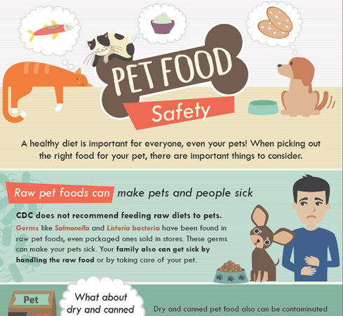 Cropped image of Pet Food Safety infographic