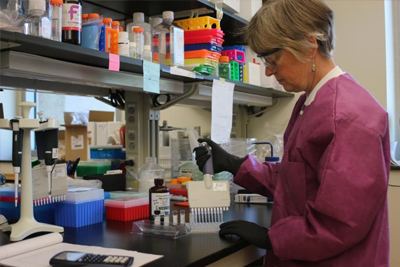 Link to What We Do - Image shows Jane Basile working in a lab to prepare reagents used in Zika testing in Ft. Collins, CO.