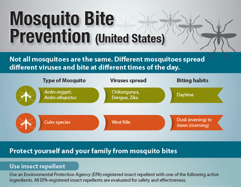 Small cropped image of the pdf:  Mosquito Bite Prevention