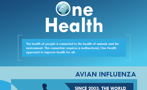 Cropped image of the One Health Infographic