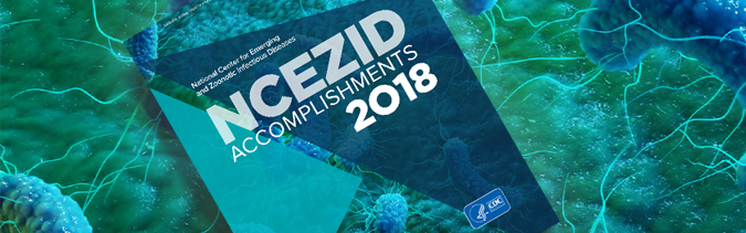 Banner representing NCEZID's 2018 Accomplishment PDF