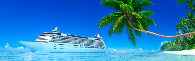 A wide shot of a cruise ship off a tropical coast. A large palm tree leans out over the water in the direction of the ship.
