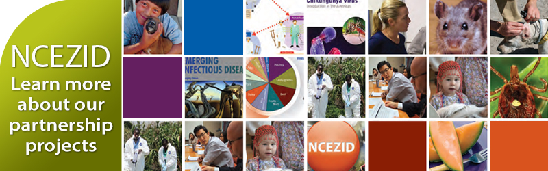 Slider image linking to Partner page. Image shows 21 small square images and the words NCEZID Learn more about our partnership projects