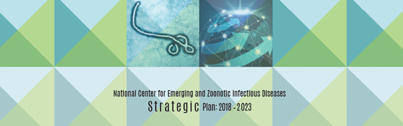 cropped image of booklet cover with words National Center for Emerging and Zoonotic Infectious Diseases Strategic Plan 2018-2023