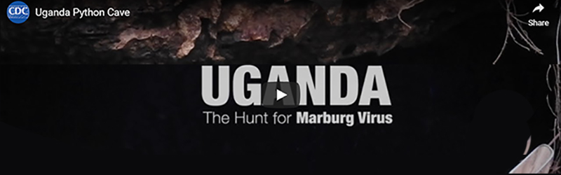Screenshot of Uganda The Hunt for Marburg Virus video.