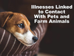 medscape – Illnesses Linked to Contact with Pets and Farm Animals