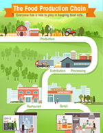 Thumbnail image of The Food Production Chain infographic