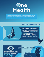 thumbnail image of the one health infographic