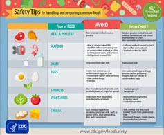 thumbnail image of the Handing Food Safety Tips infographics